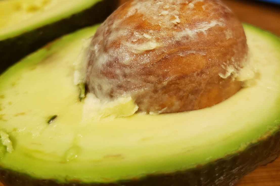 Week 16 – Avocado